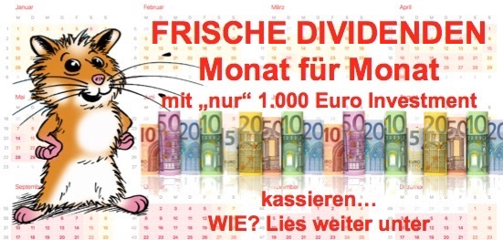 MONATLICHE DIVIDENDE MIT 1000 EURO